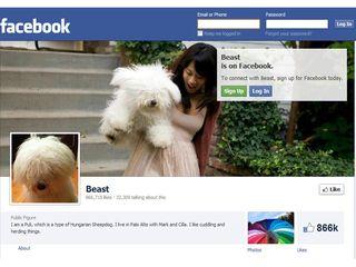 Beast en FB