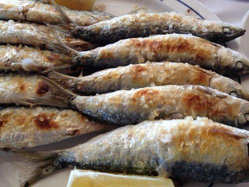 Espeto de Los Sardinales, sardinas atlánticas de Cádiz, tamaño medio grande