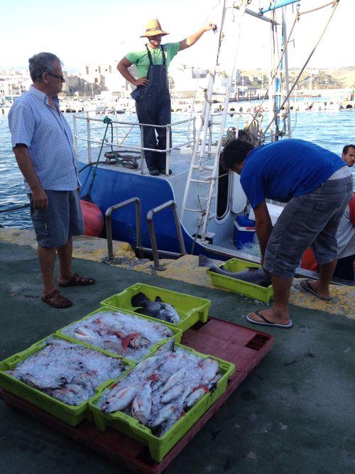 Descarga de cajas a pie de muelle, una pesca artesanal