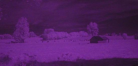 Panoramas al infrarrojo de Peter Ankh