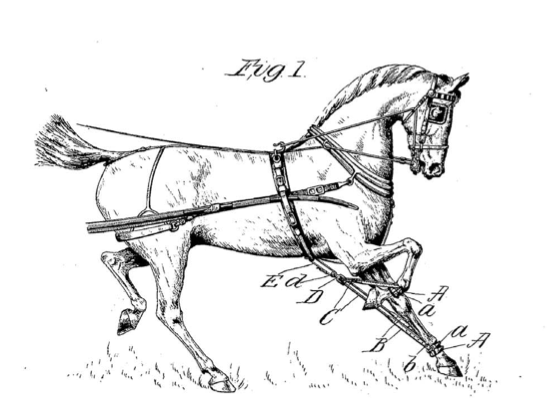 Hobble for driving horses Oct 16 1900