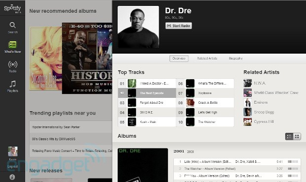 Spotify browser
