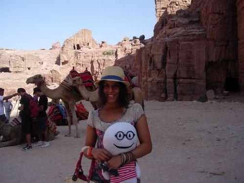 Laura_stabri_camellos