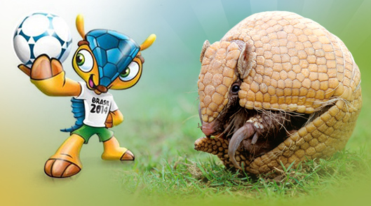 Tatú mascota del Mundial 2014