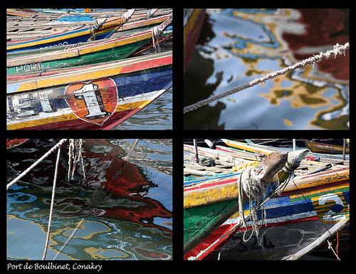 Guinea, vía flickr
