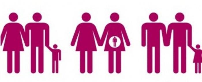 2012-06 17 matrimonio homosexual