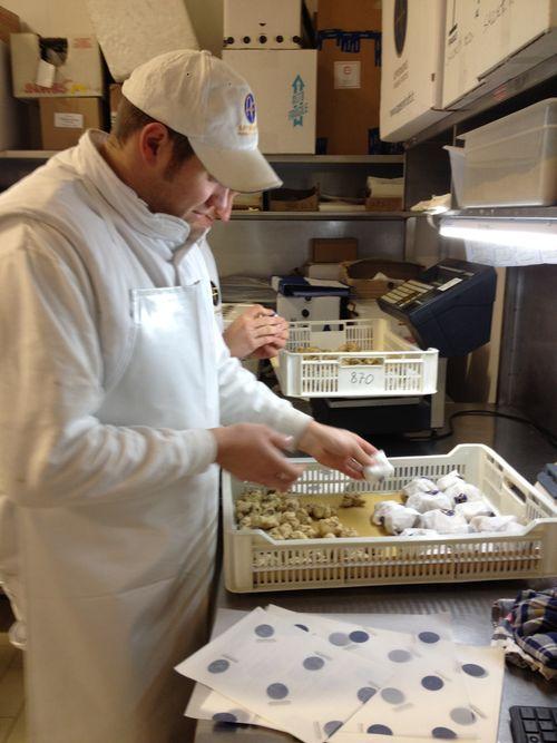 Operario envasando trufas blancas en Appeninno Food