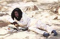 Beduino leyendo El Alquimista