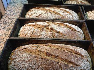 Panes que se cuecen en moldes