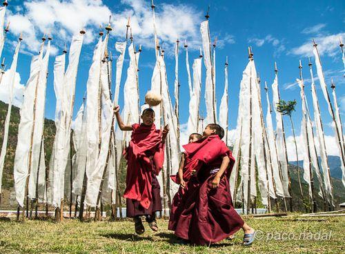 Pequeños Budas