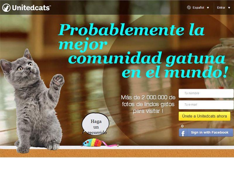 Unitedcats
