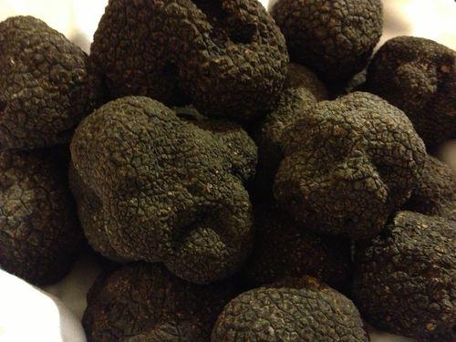 "Autenticas trufas negras, ""tuber melanosporum"""