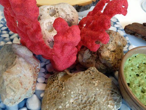 Corales de dulse con emulsión de alga codium
