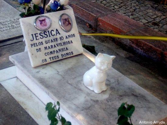 Cementerios humanos para animales