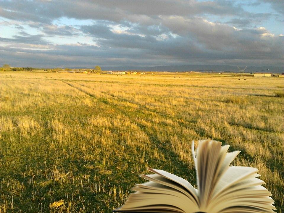 25 libros de viajes que invitan a emprender el vuelo >> El