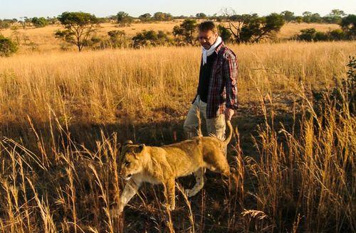 Paseando con leones 3