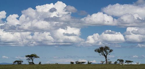 Cielos de África 6