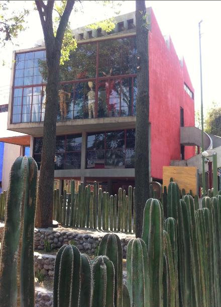 Casa diego cactus