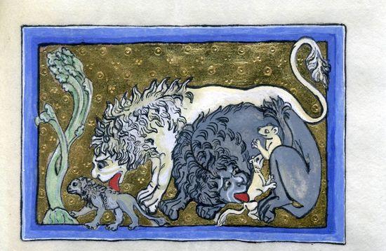 Lion-royal-bestiary2