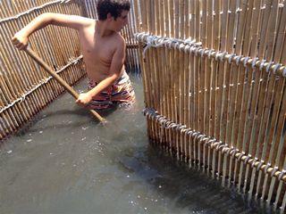 Jacinto Castejón rastrillando el fondo de un corralito con el salabre