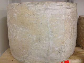 Queso gigante de Cantagrullas, tipo chedar, entre 40 y 50 kilos de peso