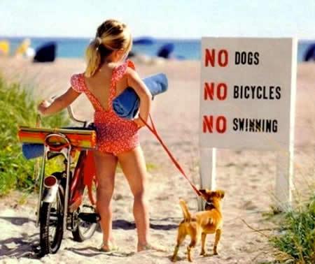 No dogs, no bicycle, no swimming