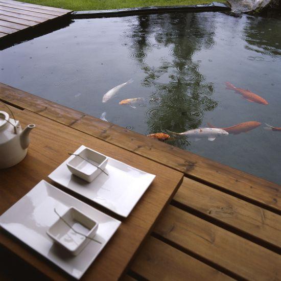 Dentro del estanque, hay varios tipos de kois, esos peces originarios de China (aunque conocidos en Occidente gracias a los jardines japoneses).