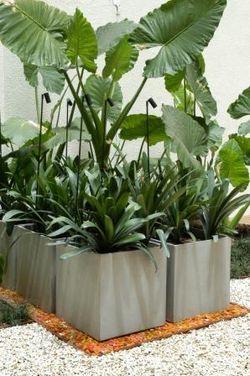 Agrupando las macetas y las plantas se dibuja un jardín para el hoy. Depurado, vibrante y de fácil  mantenimiento.