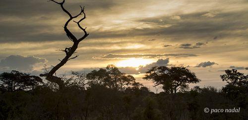 Cielos de África 7