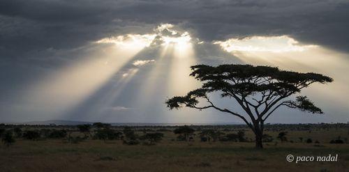 Cielos de África 10