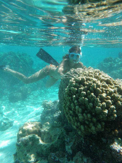 (Polinesia Francesa)-24