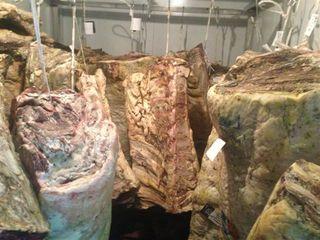 Cámaras de maduración de carnes de Ca Joan. Recibe los costillares de Cárnicas Lyo con 4 meses de maduración y Joan Abril les aplica uno o dos meses más, según los casos