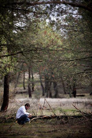 En los pinares del entorno seleccionando piñas