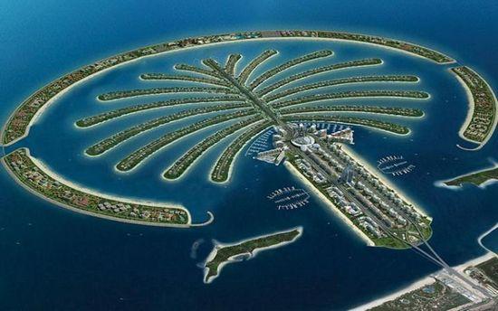 Isla palmera