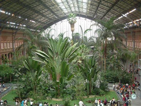 Jardin de Atocha