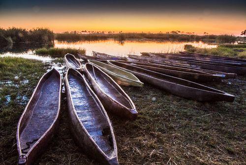 Delta del Okavango 3