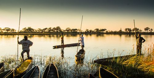 Delta del Okavango 4