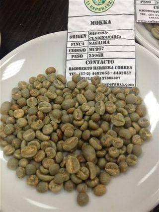 Muestra en verde de café mokka
