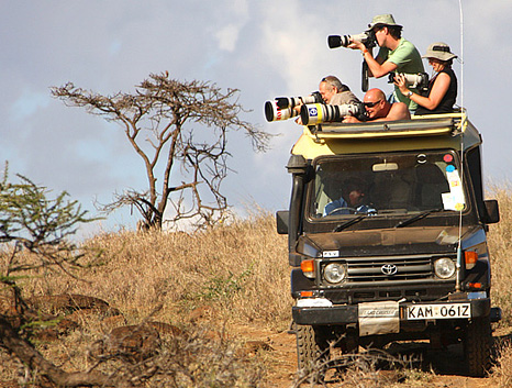 Safari fotografos