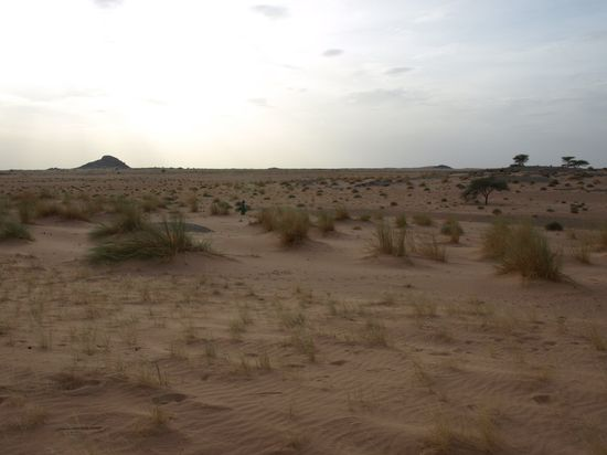 Paisaje Sahara