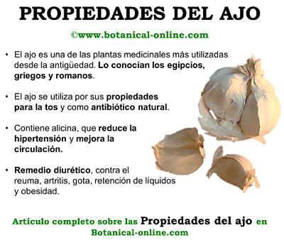 Propiedades_ajo