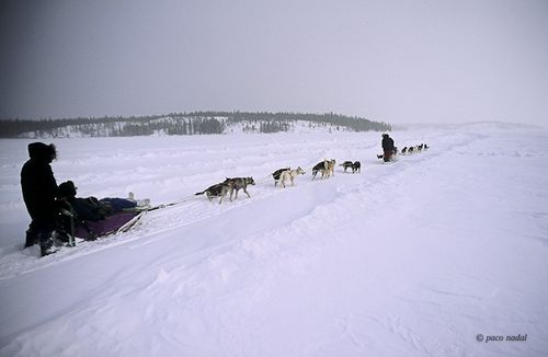 Ártico canadiense-3