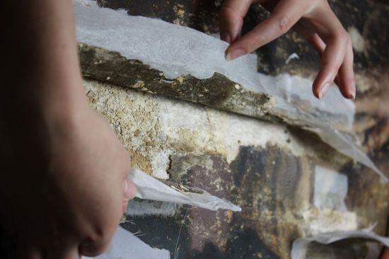 Vasari Restauración