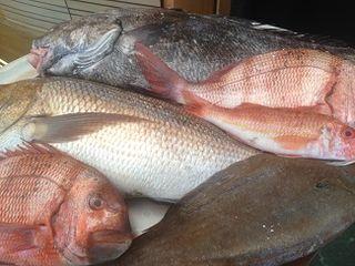 Surtido de pescados
