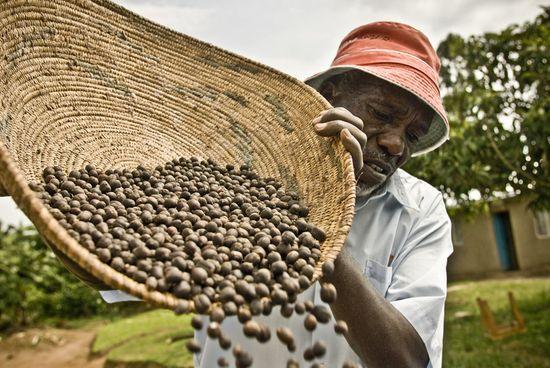 Cafe_uganda