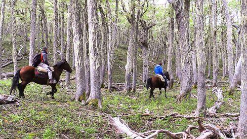 A caballo por los Andes 1-Paco Nadal