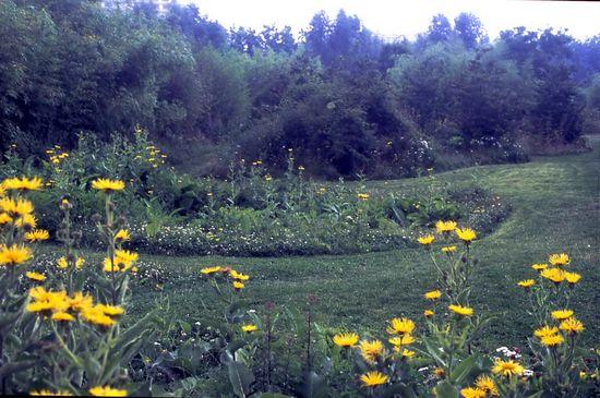Parque-Andre-Citroen-Jardin-en-Mouvement-vivaces_022