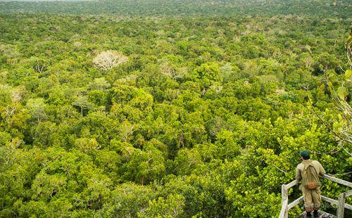 Vista desde La Danta 2