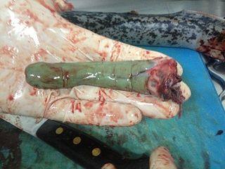 Hígado de la lamprea, elemento fundamental del plato.