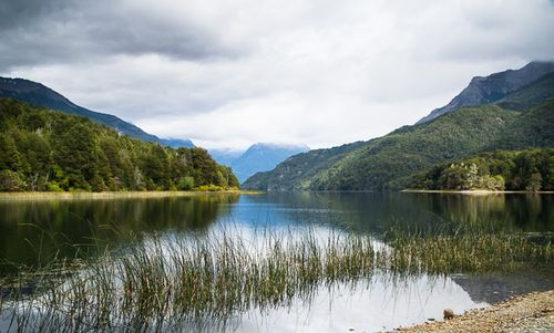 Huella Andina lago Steffen-Paco Nadal